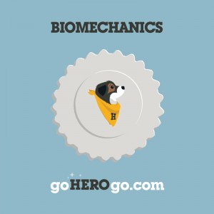 hero_biomechanics-01