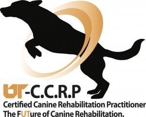 final CCRP logo