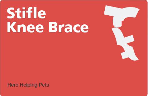 dog-leg-braces-stifle-knee