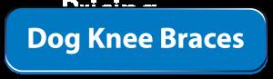 Dog Knee Braces